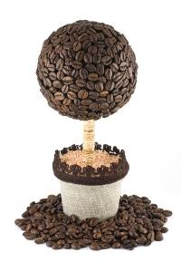 Дерево с кофейными зернами своими руками